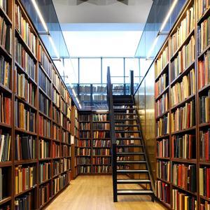 Библиотеки Большевика