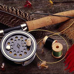 Охотничьи и рыболовные магазины Большевика