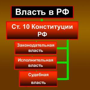Органы власти Большевика