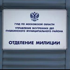 Отделения полиции Большевика