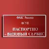 Паспортно-визовые службы в Большевике